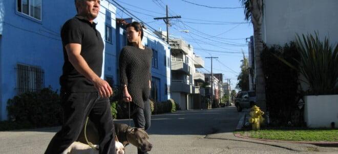Cesar Millan: Zaklinacz psów s6 odc. 12